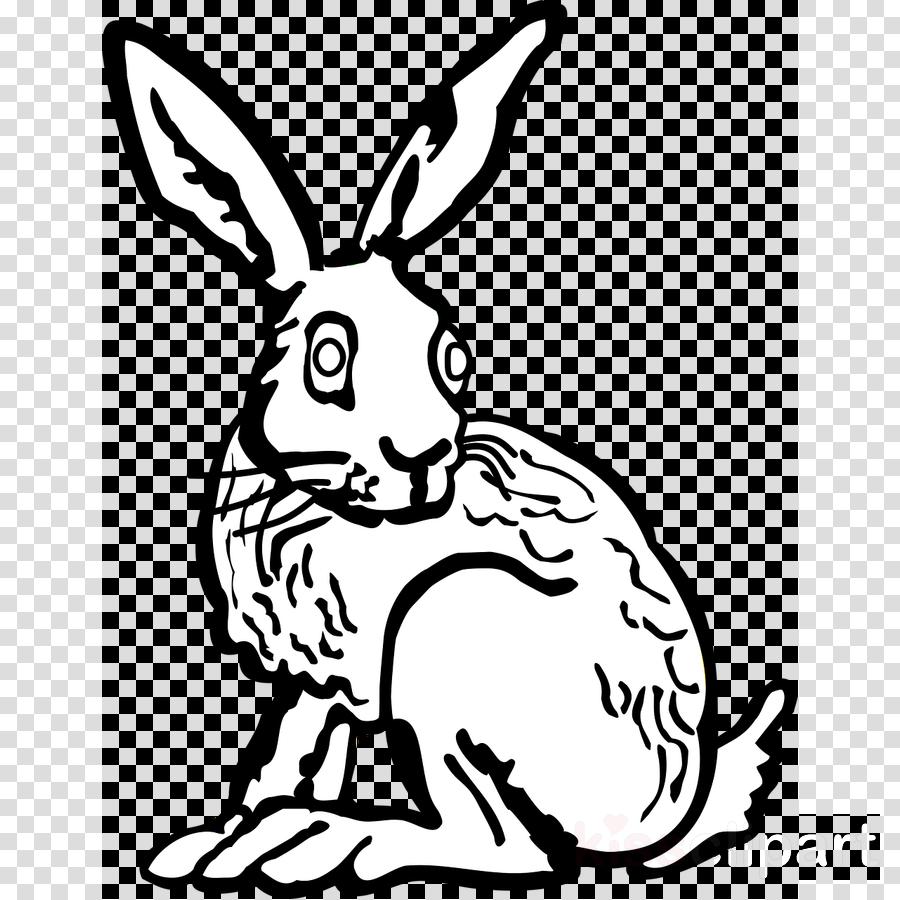 Clipart Bunny Gambar Clipart Bunny Gambar Transparent FREE