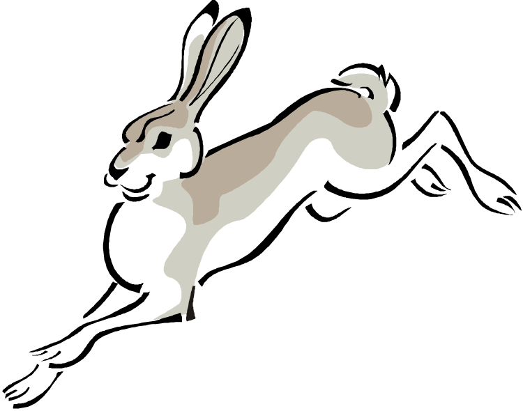 collection of eared. Clipart bunny holland lop