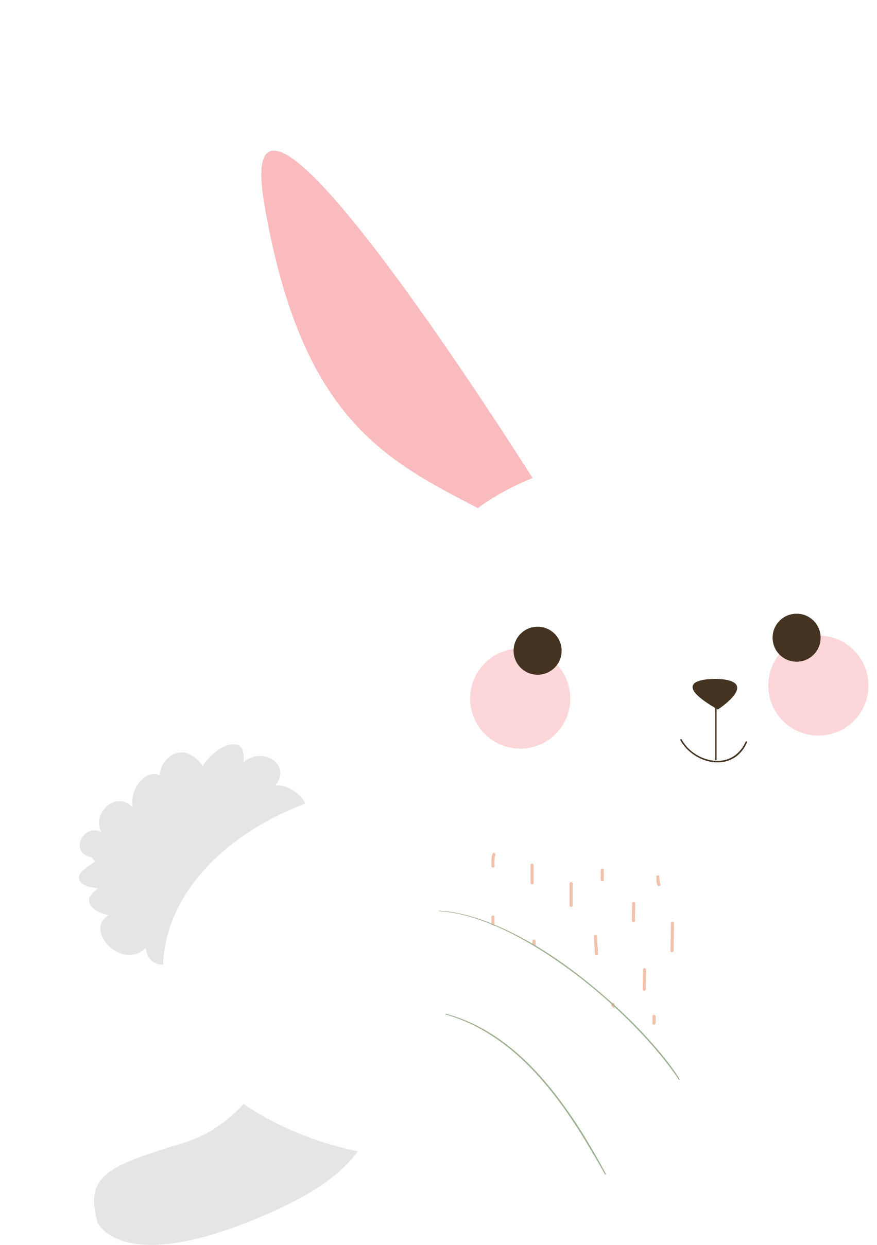 Png transparent free images. Pet clipart rabbit