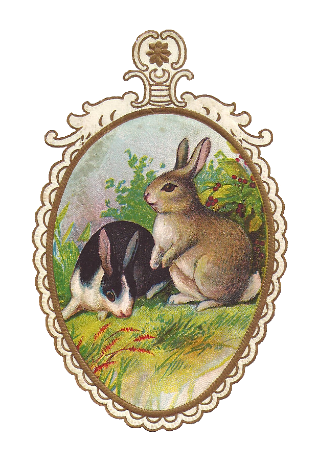Easter animals png bilby. Clipart bunny solid