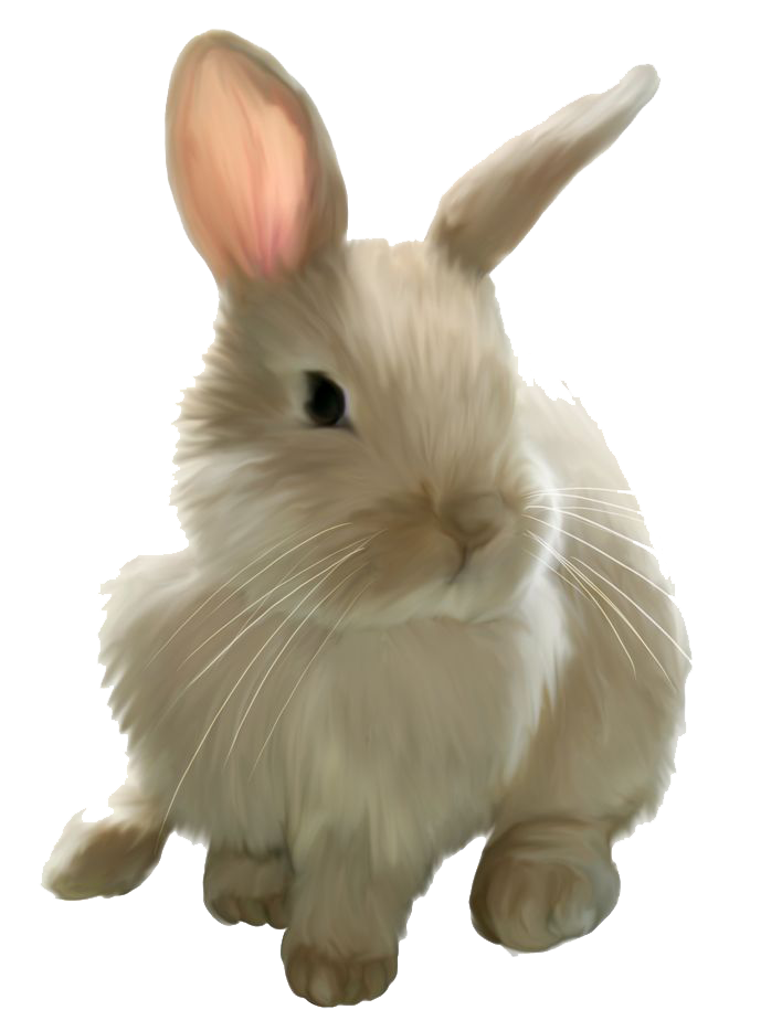 Clipart bunny transparent background. Easter rabbit clip art