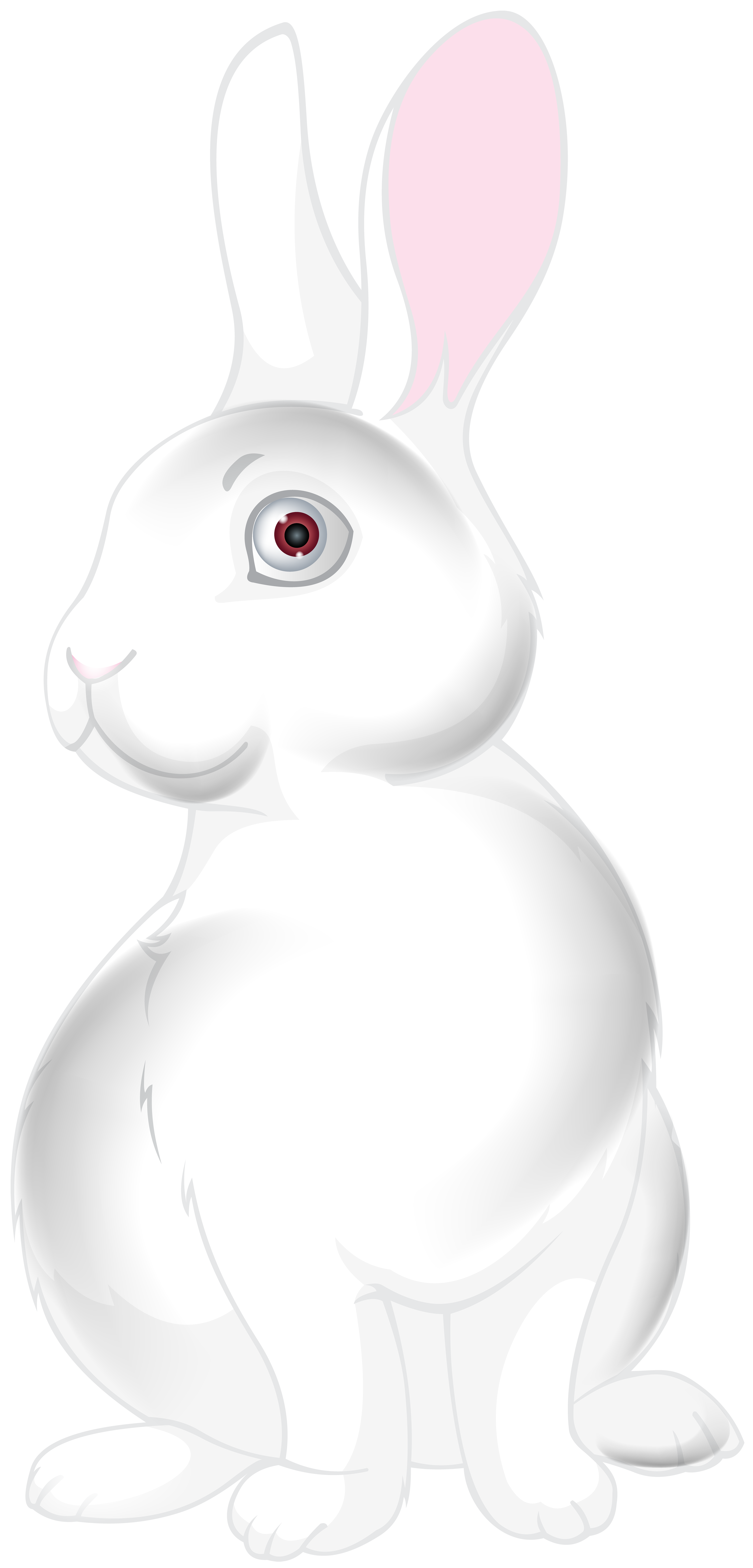 White cartoon png clip. Pets clipart bunny
