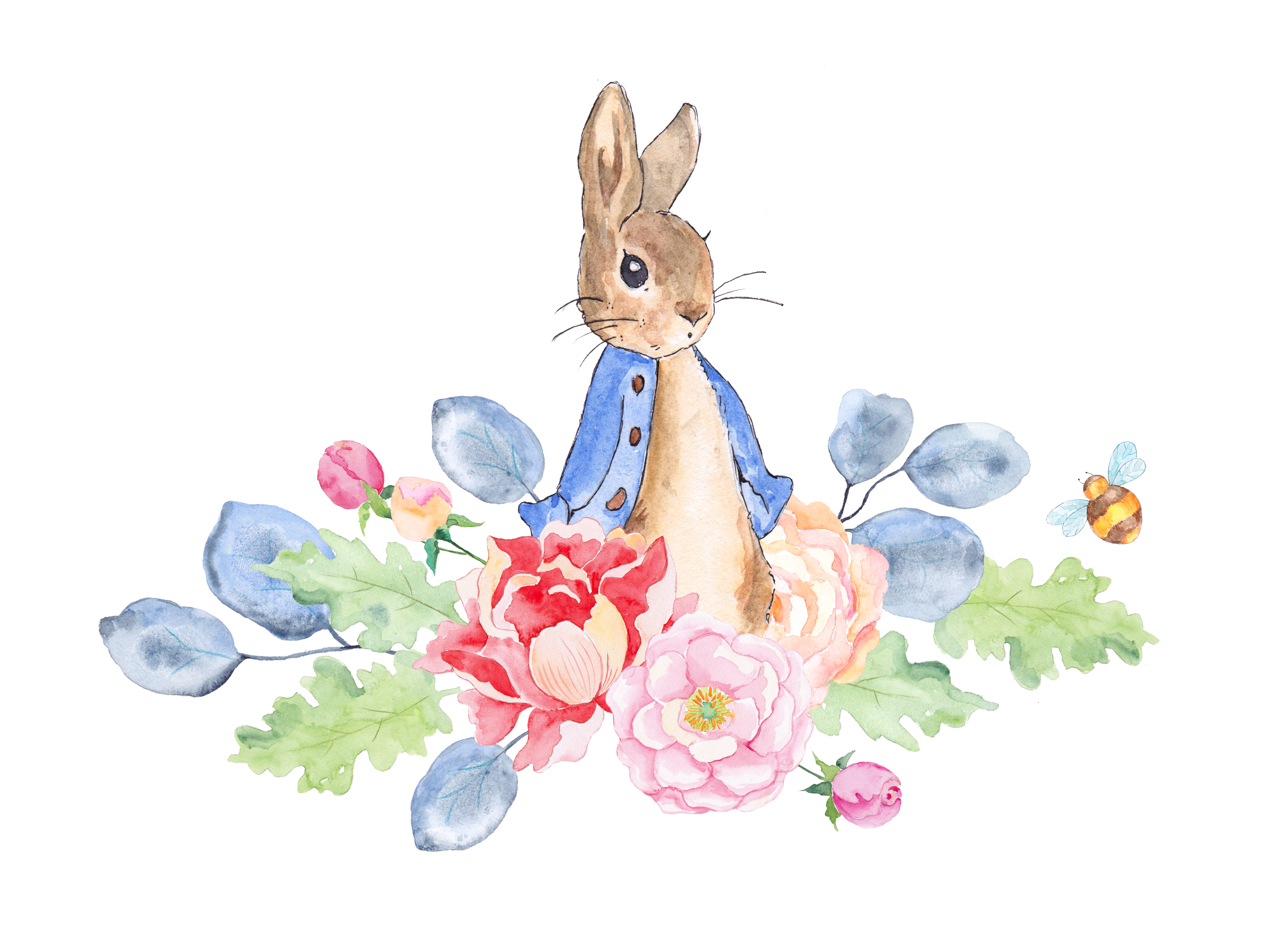 The tale of peter. Clipart rabbit watercolor
