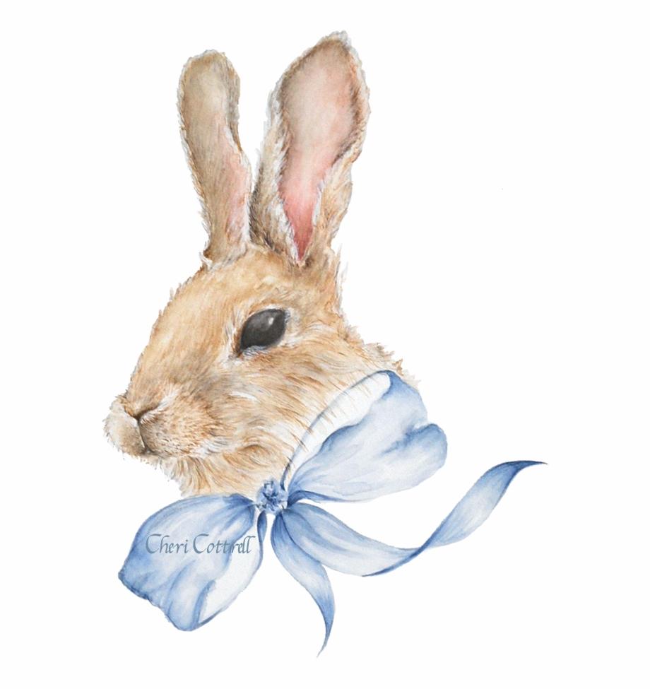 Clipart rabbit watercolor. Bunny watercolour png download
