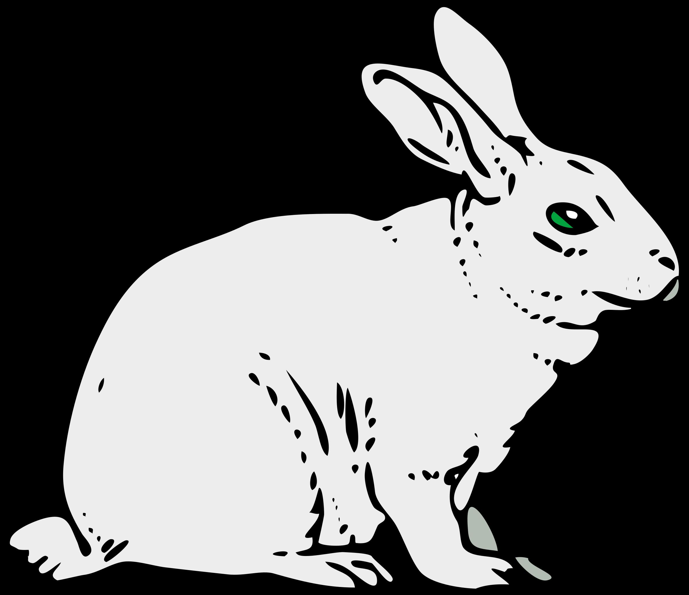 Architetto coniglio big image. Clipart bunny woodland