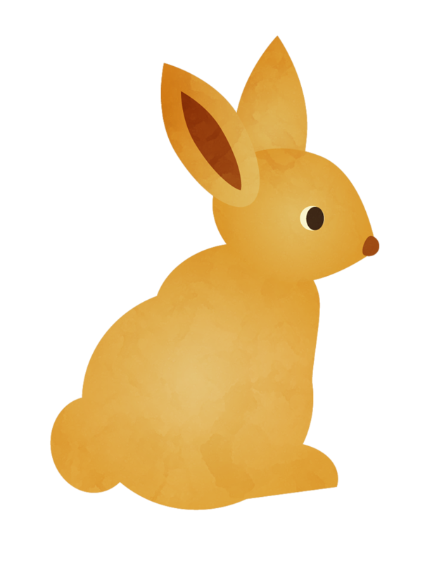 Clipart bunny woodland. Racoon png critters animals