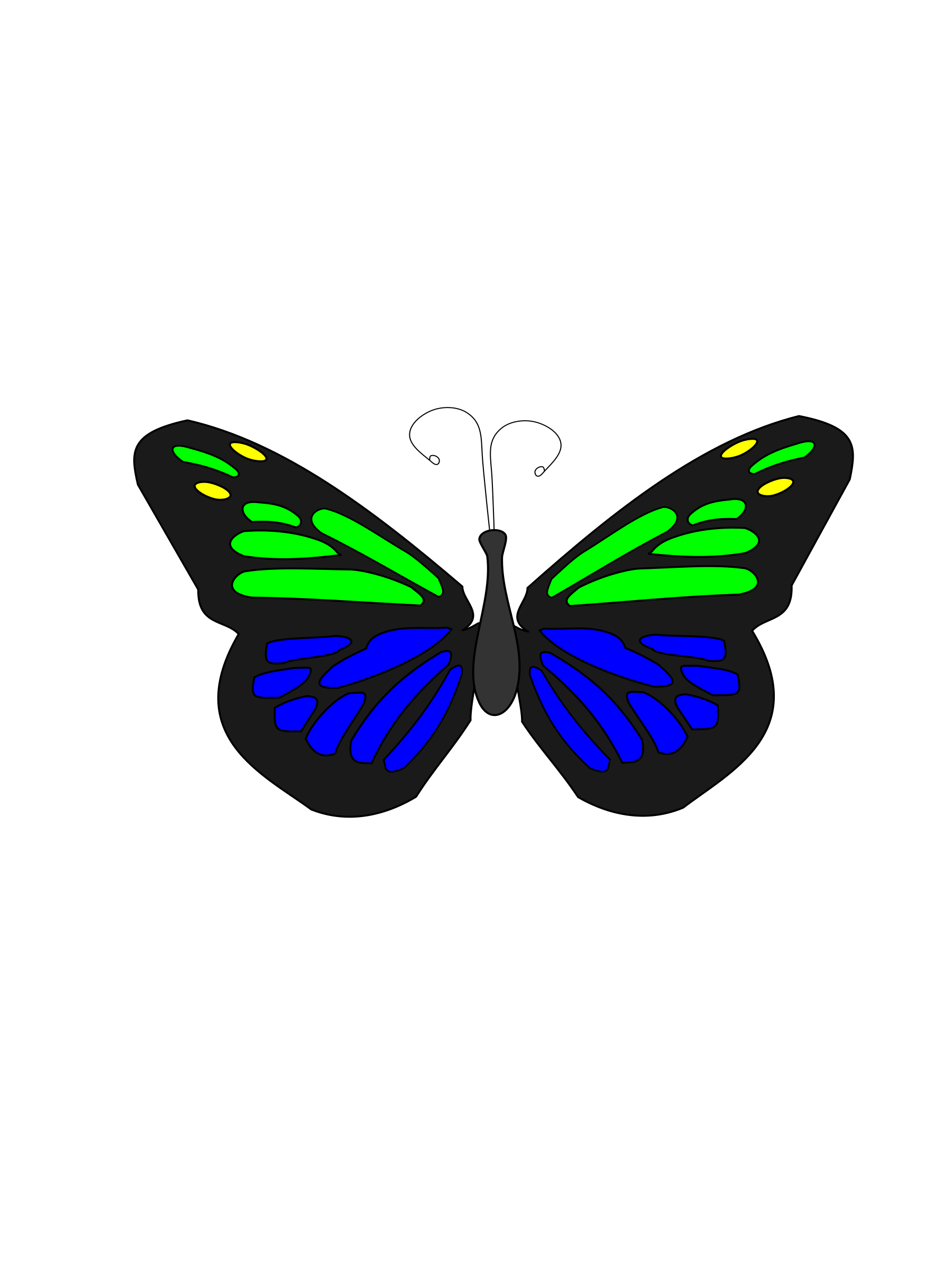Floating butterfly animation big. Moth clipart animated