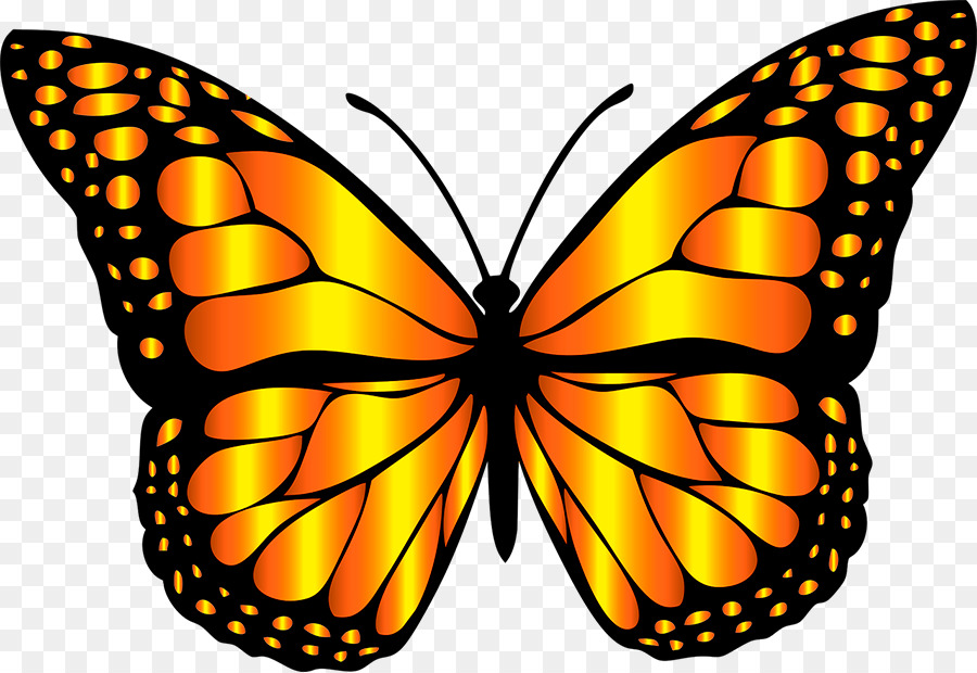 Cartoon wing graphics . Clipart butterfly art