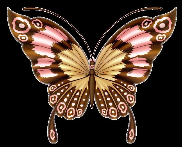 Moth clipart vintage butterfly. Butterflies pinterest