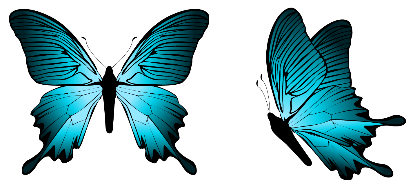 Blue png image gallery. Clipart butterfly banner