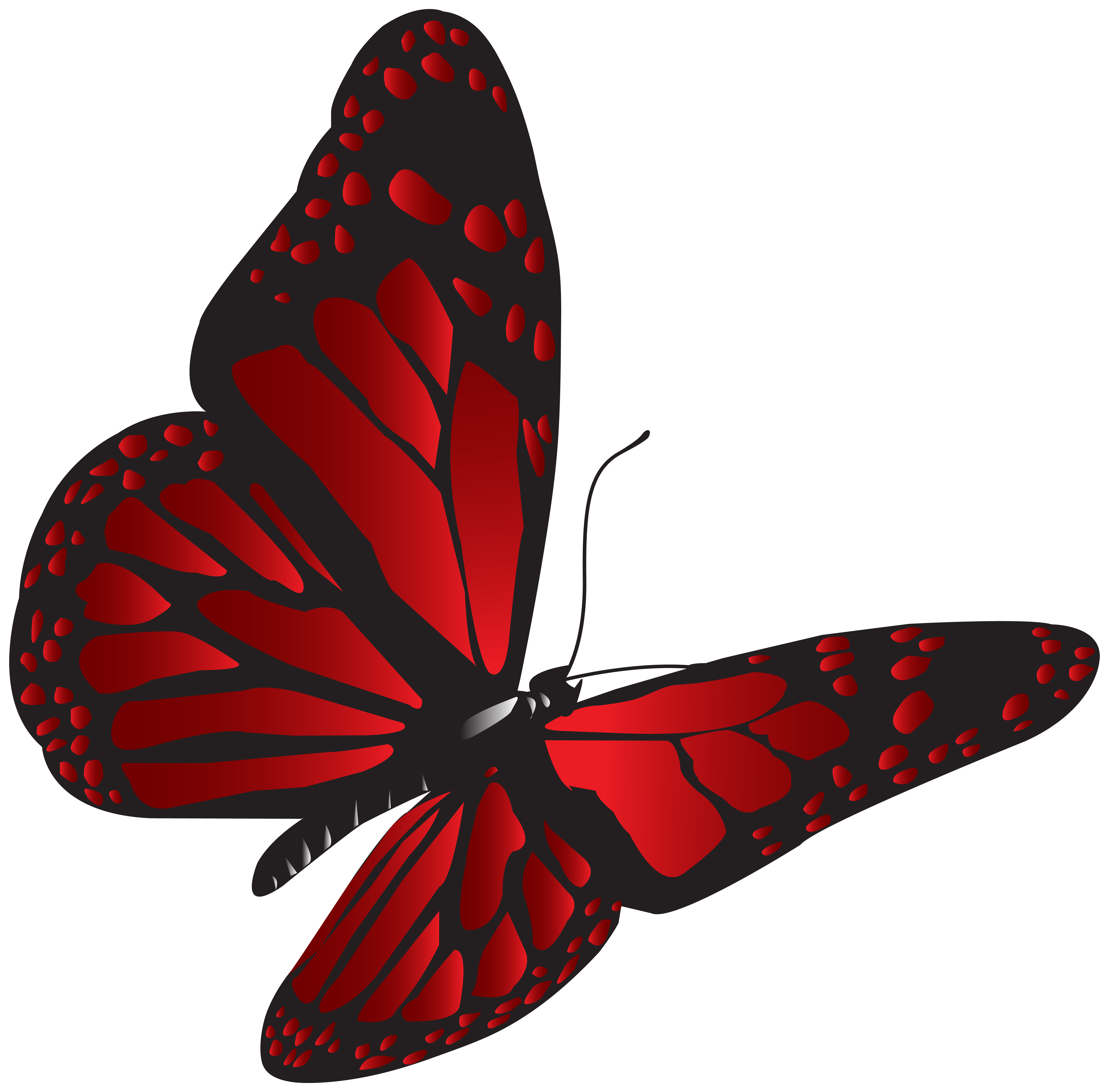 Clipart butterfly banner. Red png clip art