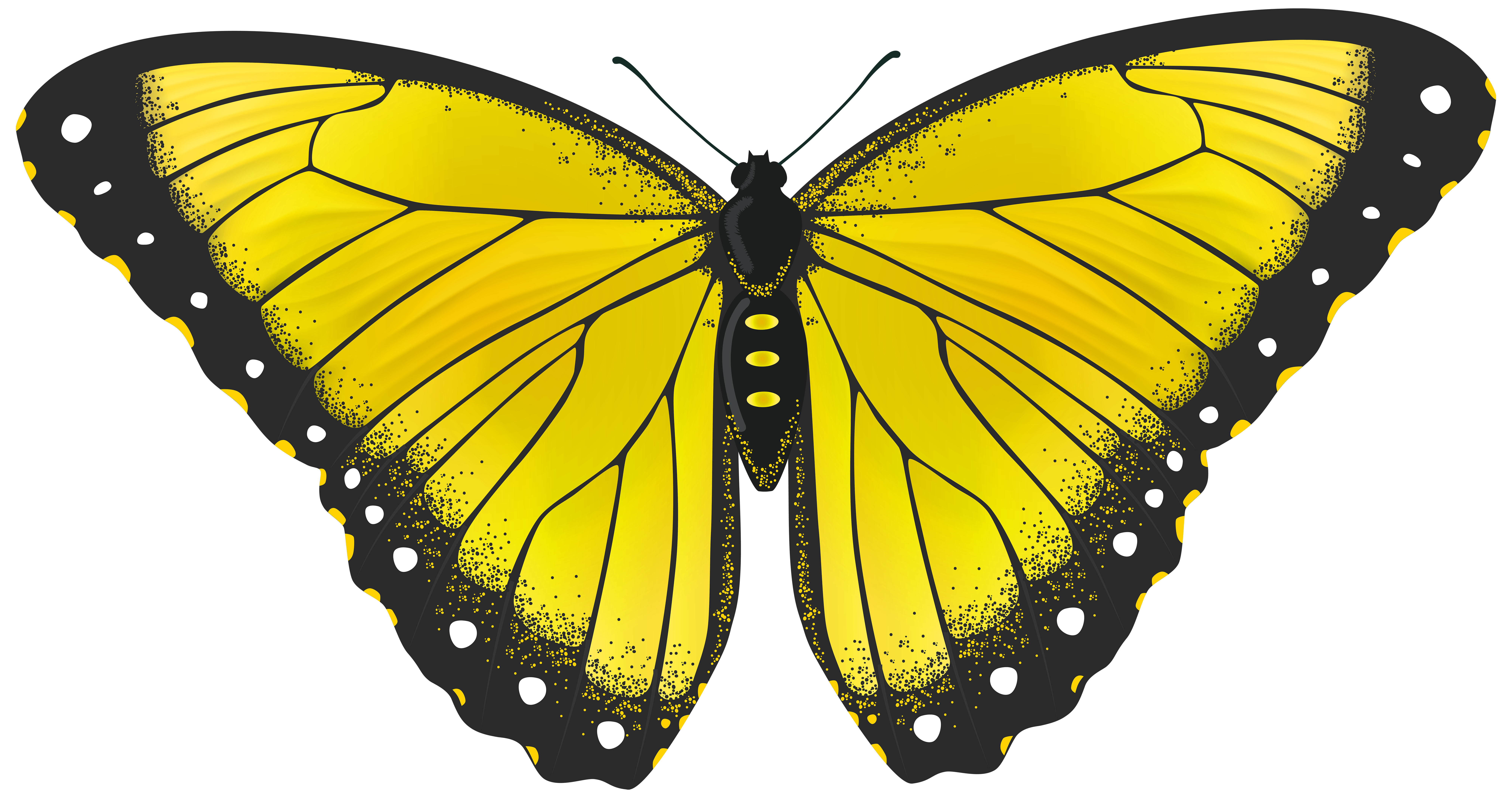 Clipart butterfly banner. Yellow transparent png clip