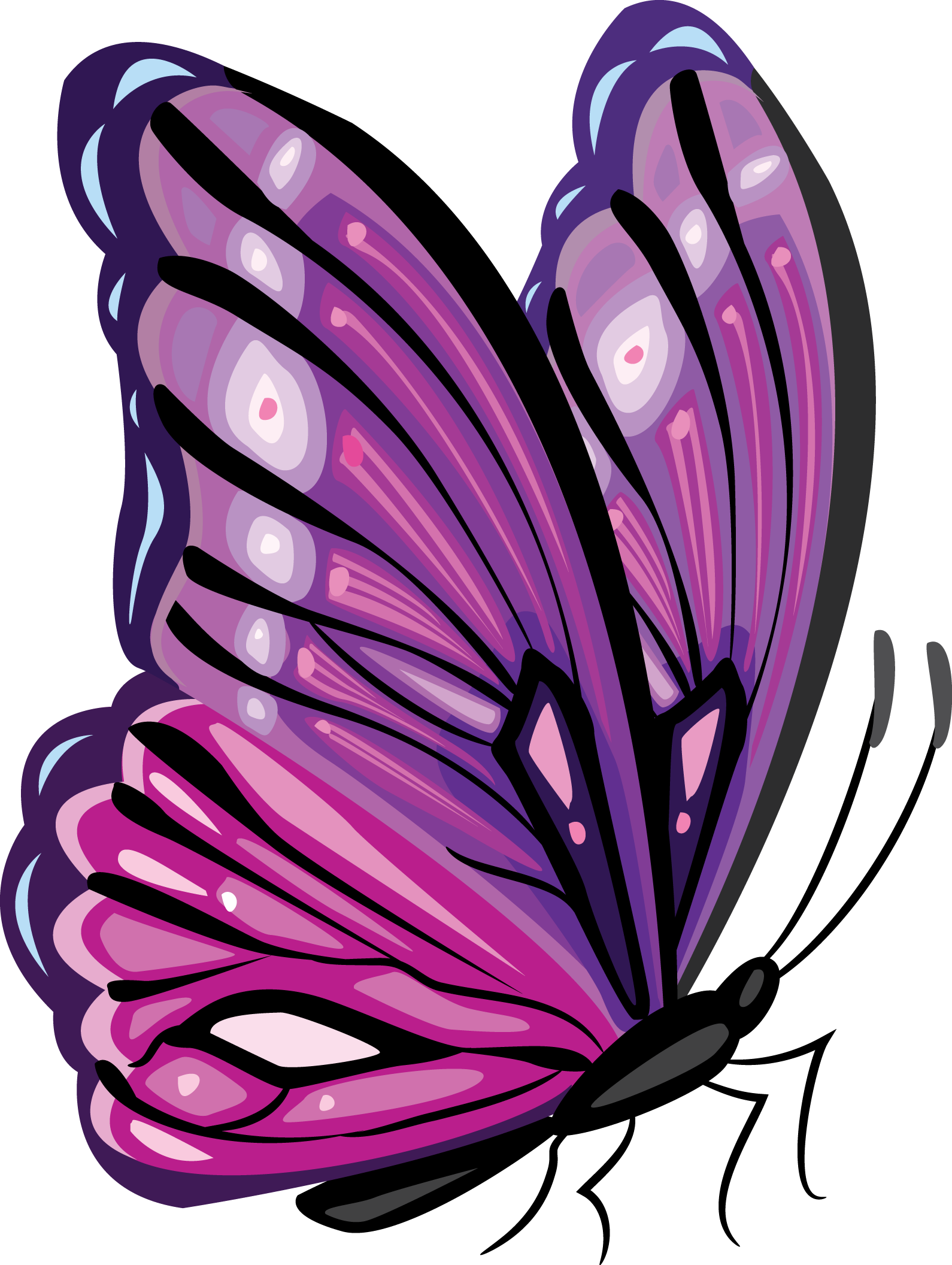 Clipart butterfly burgundy. Pin by ana maria