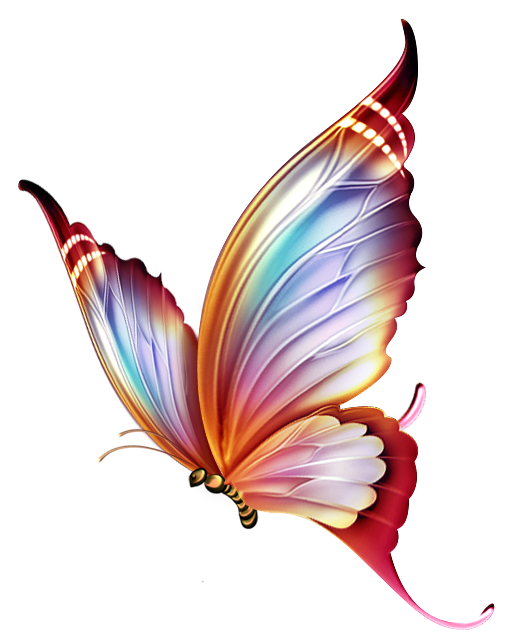 Colors clipart draw. Papillons png butterfly tubes