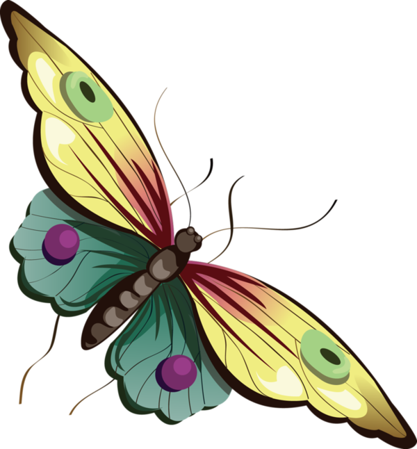 Yellow and blue gallery. Clipart butterfly cartoon