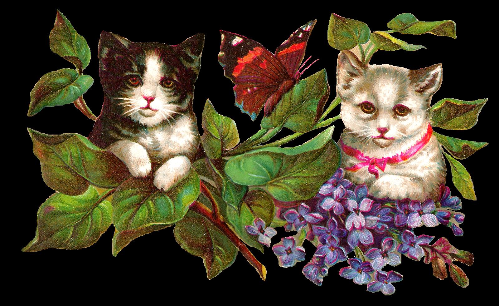 Antique images cat image. Lake clipart vintage