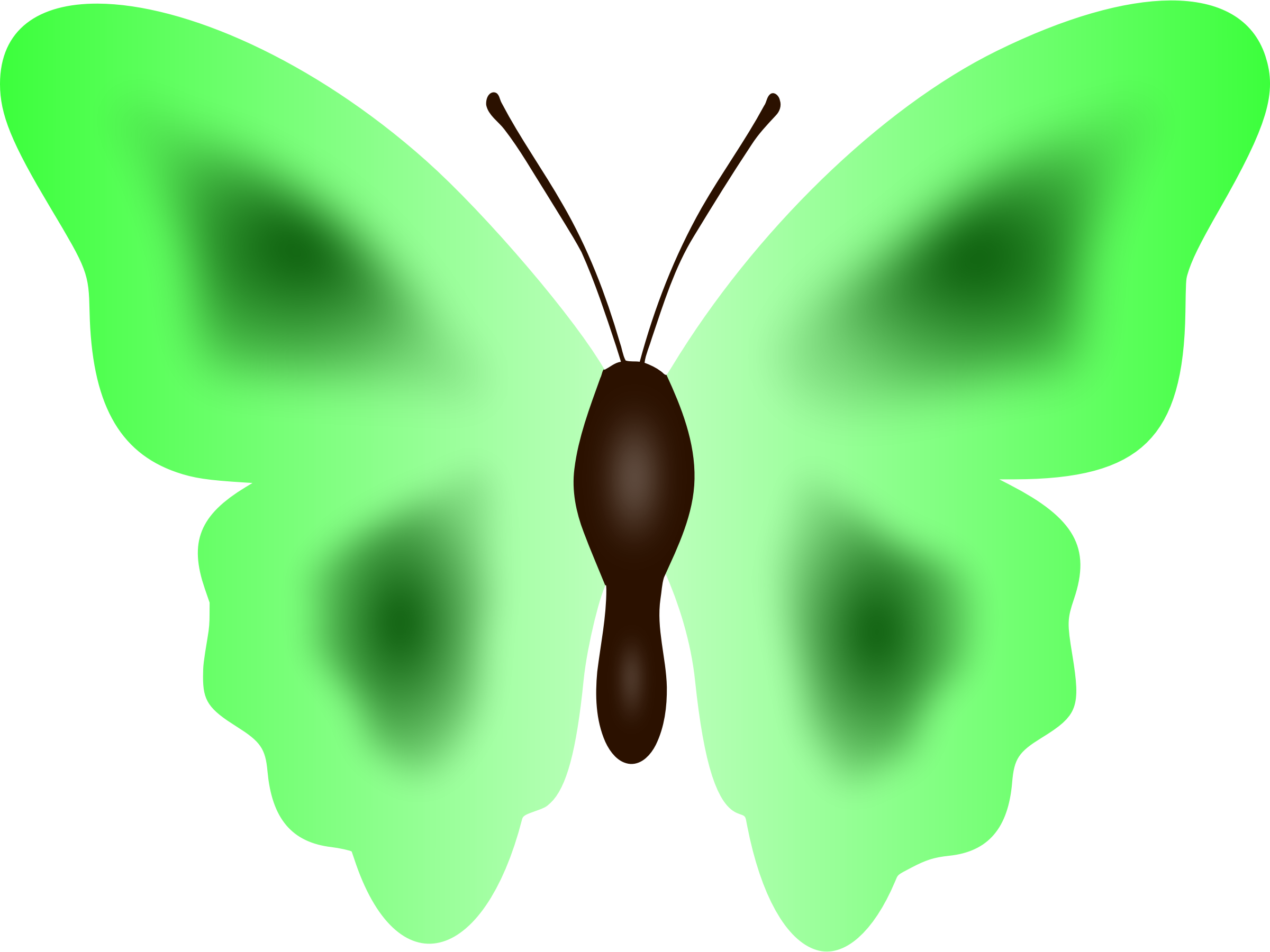 Clipart butterfly colour. Big image png
