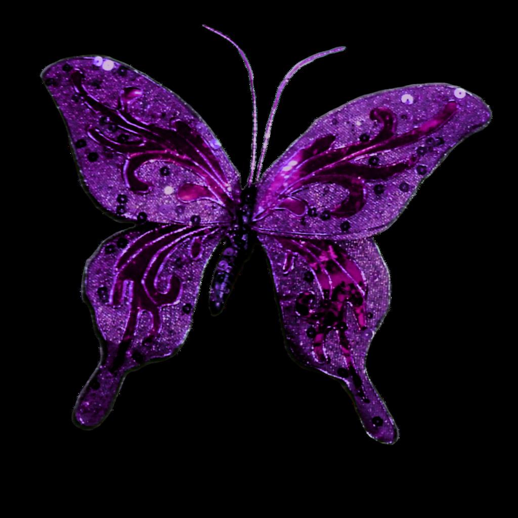 Butterfly clip art png. Glitter clipart glitter bottle
