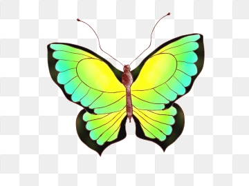 Free download flower fly. Clipart butterfly dance