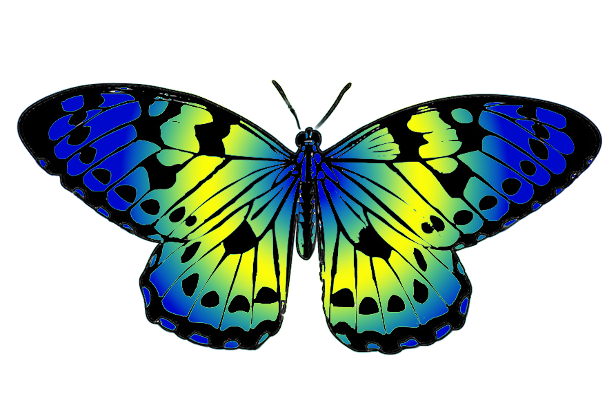 Blue cliparthot morpho of. Galaxy clipart butterfly