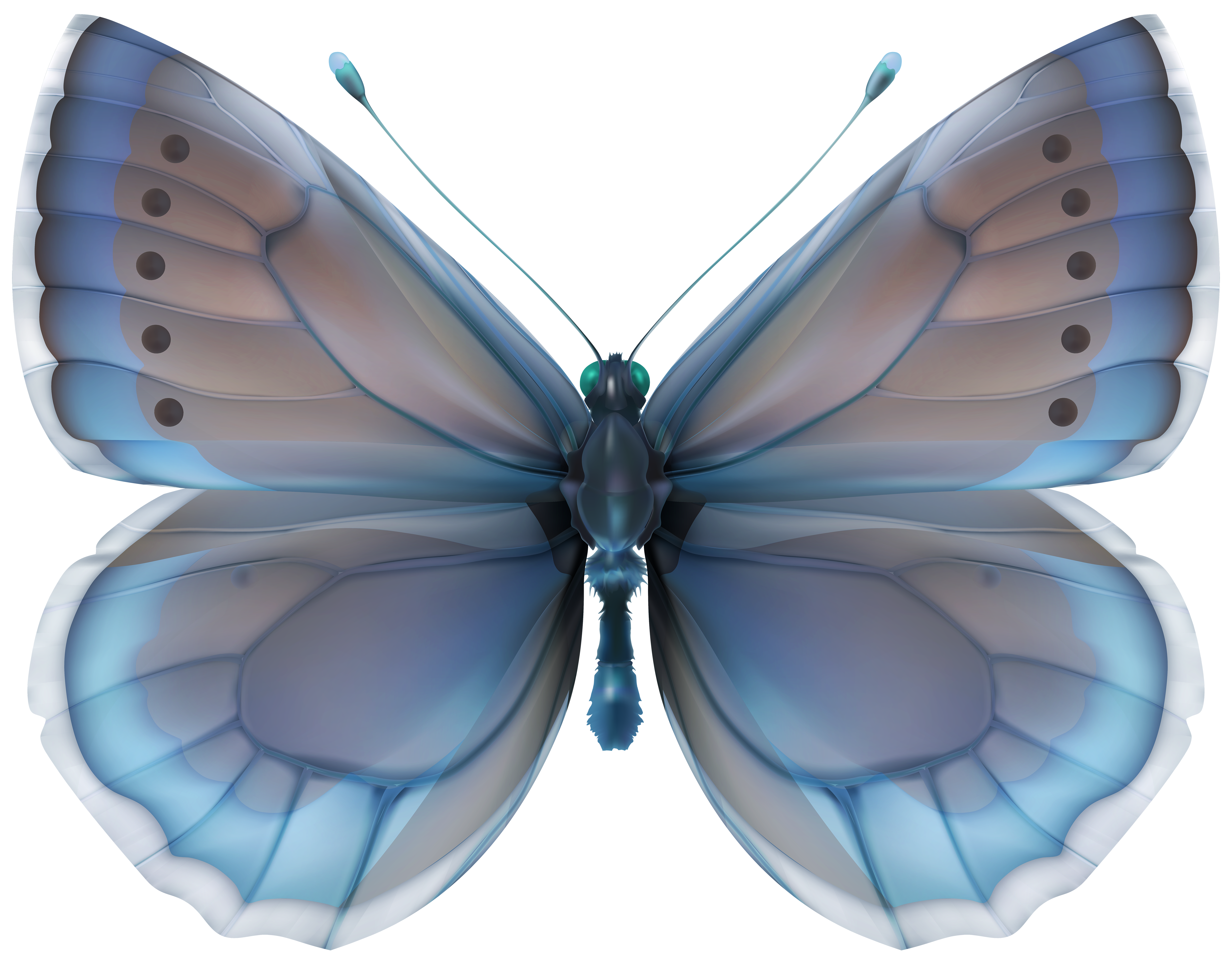Clipart butterfly diamond. Blue png clip art