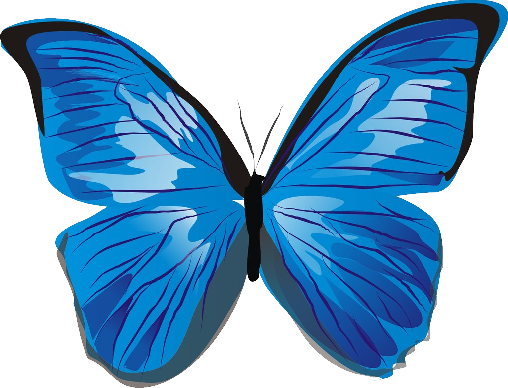 Moth clipart buttefly. Butterfly png image free