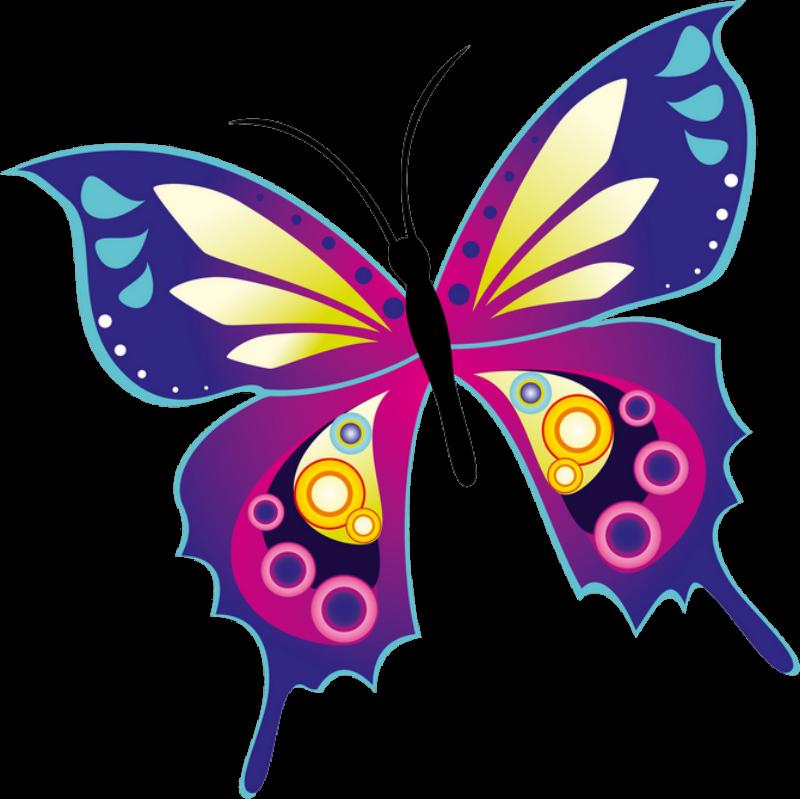 Wall d cor butterflies. Clipart butterfly exercise