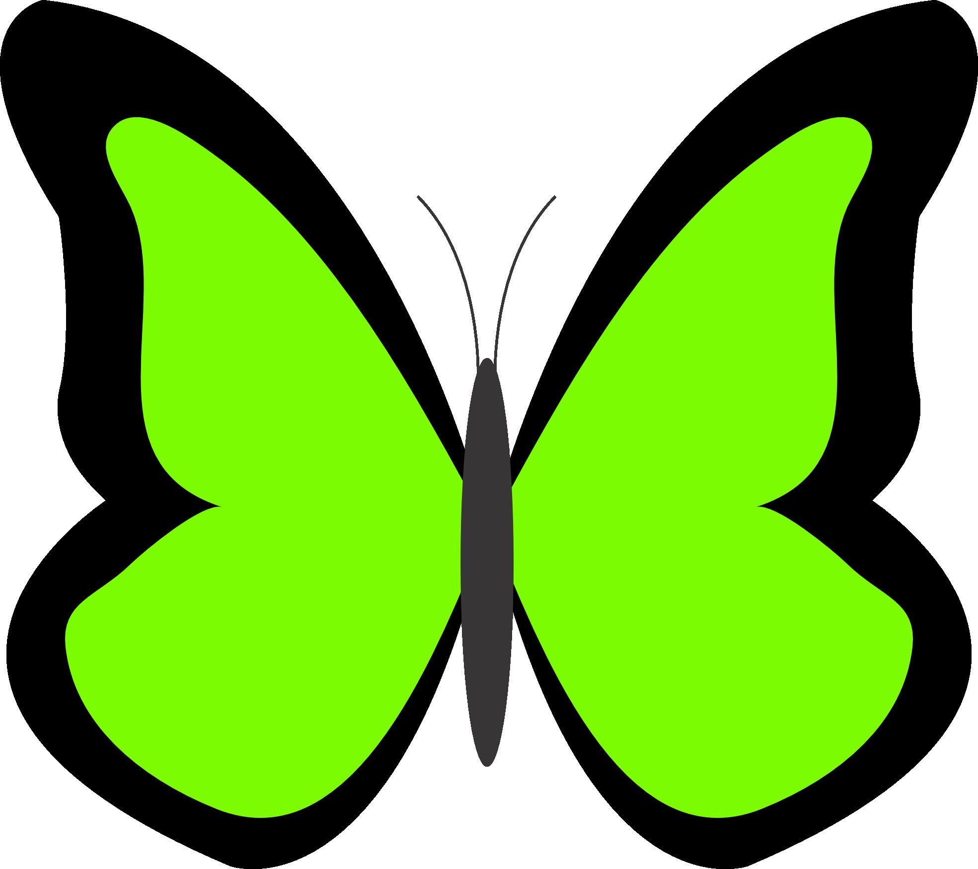 Moth clipart cartoon. Green butterfly