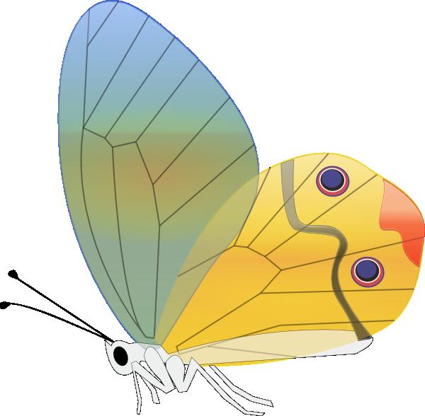 Transparent clip art at. Eye clipart butterfly