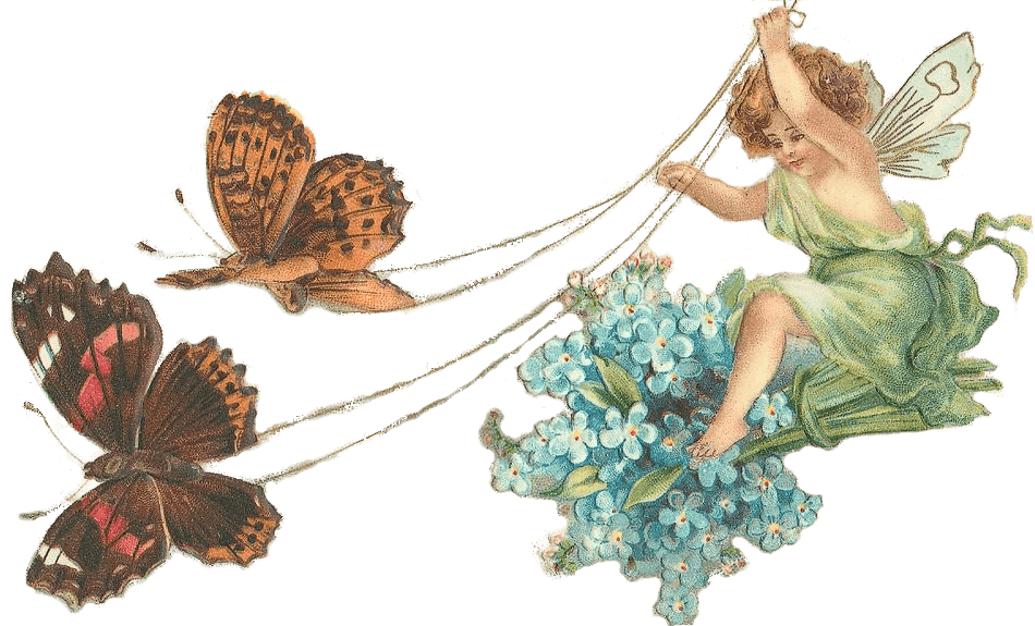 Clipart butterfly fairy. With butterflies transparent png