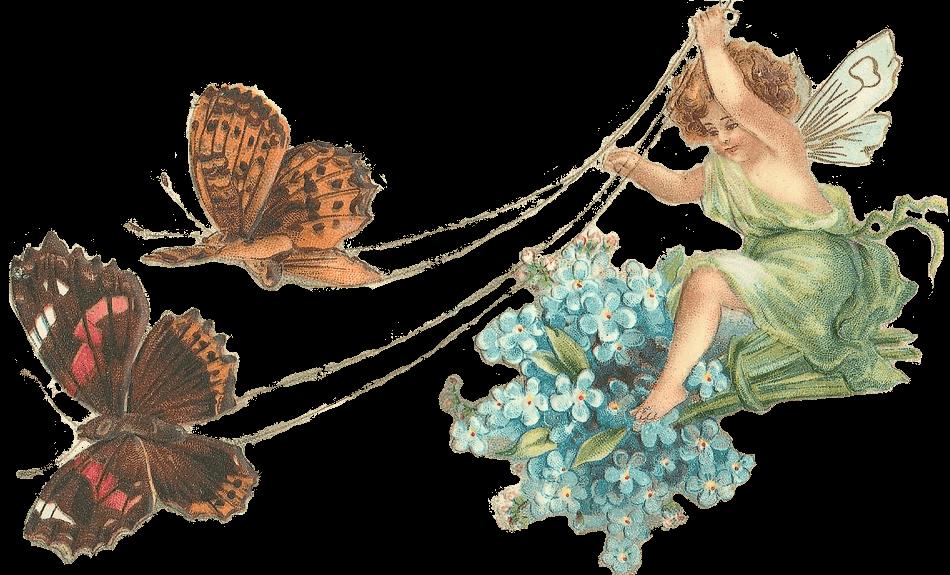 Fairies clipart butterfly. Fairy with butterflies transparent