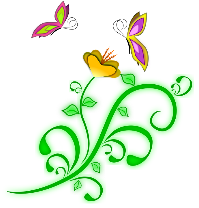 Vine pencil and in. Clipart butterfly flower