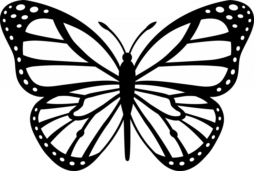 Outline clipart gift. Image of butterfly loubet