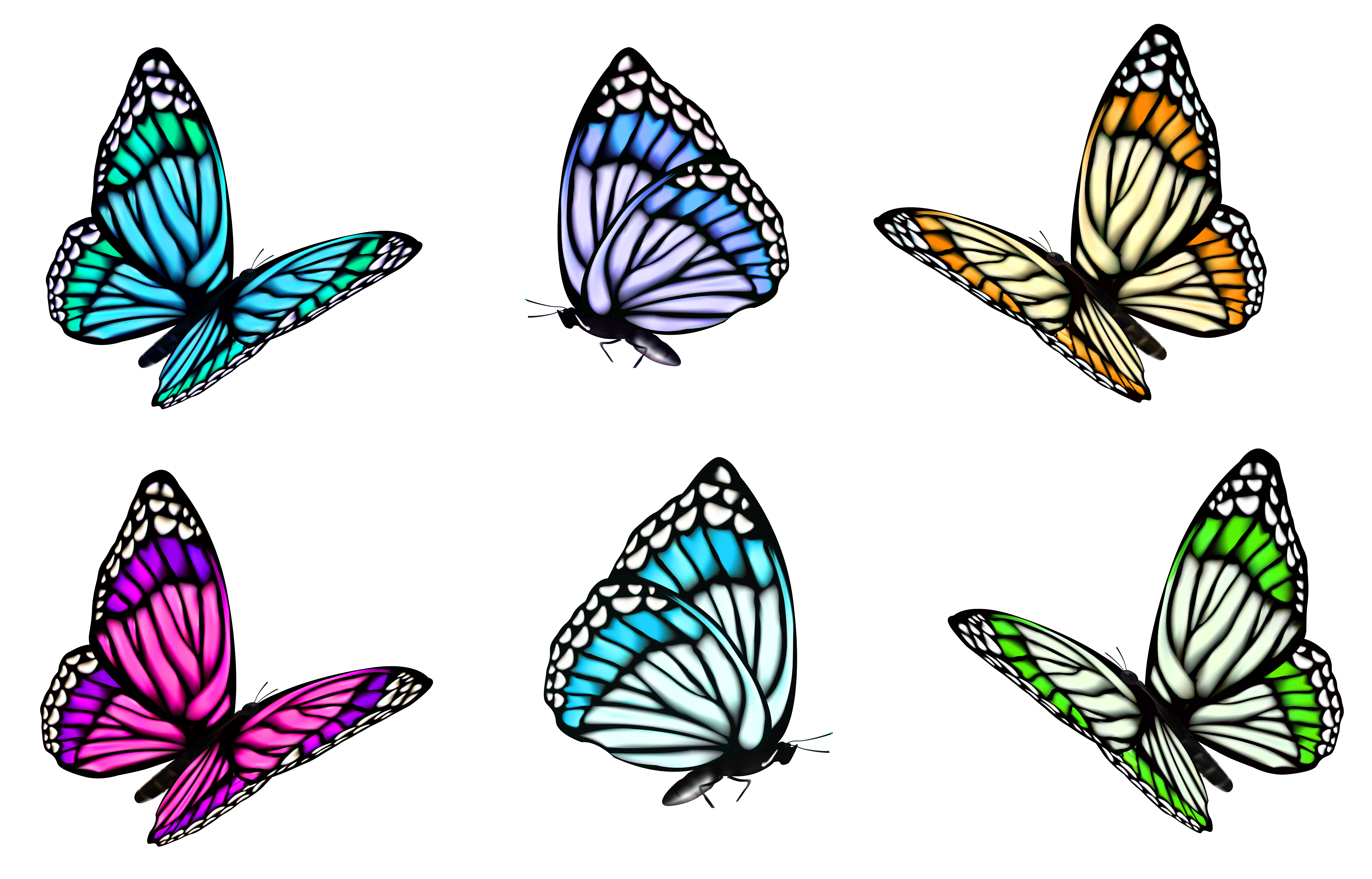 Transparent butterfly set png. Feet clipart voet