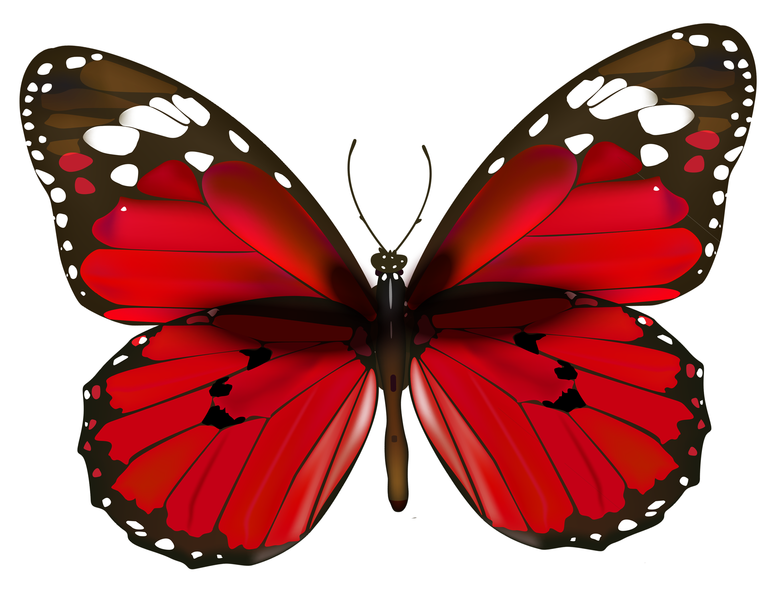 Clipart butterfly happy birthday. Red png gallery yopriceville