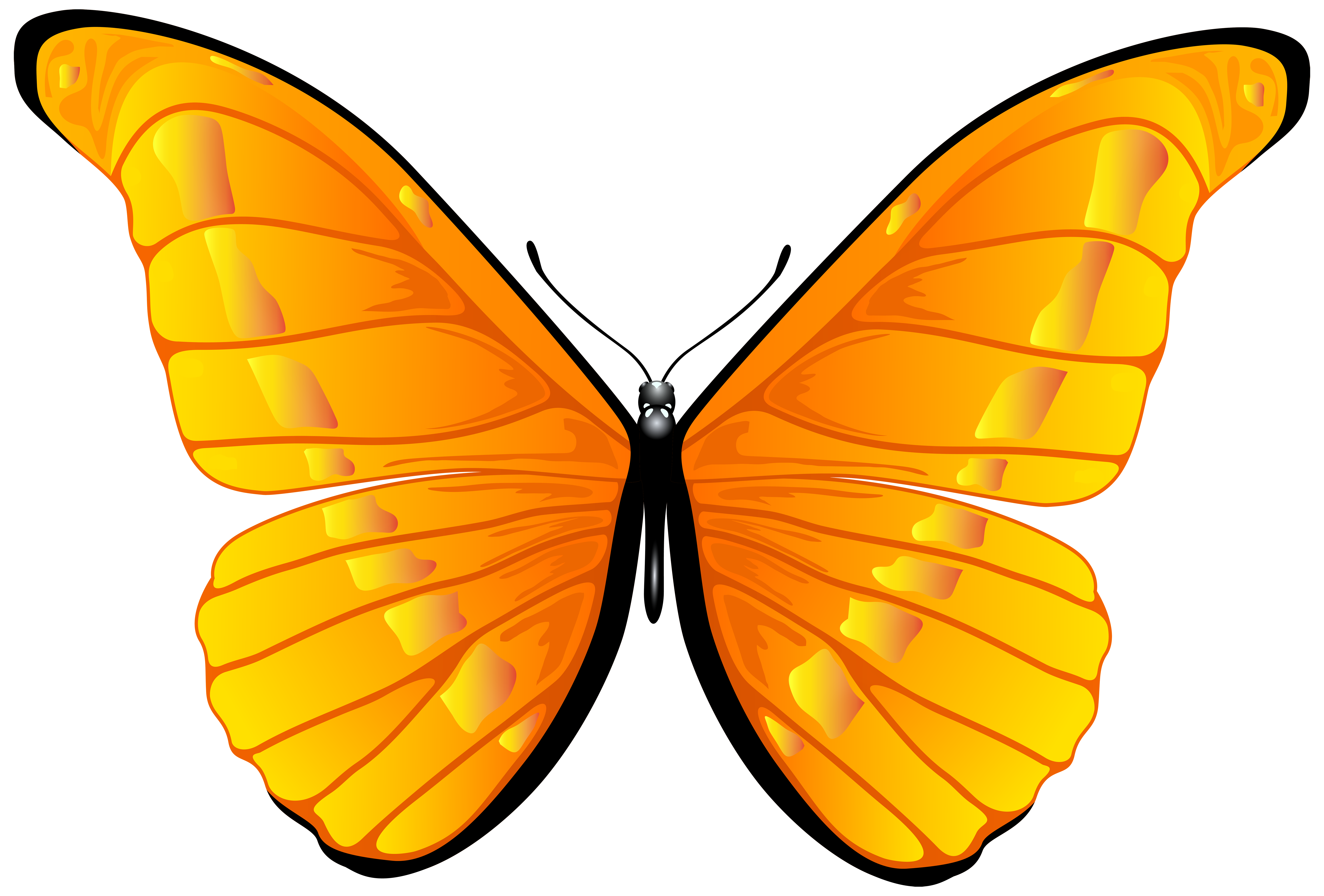 Orange png clip art. Clipart butterfly happy birthday