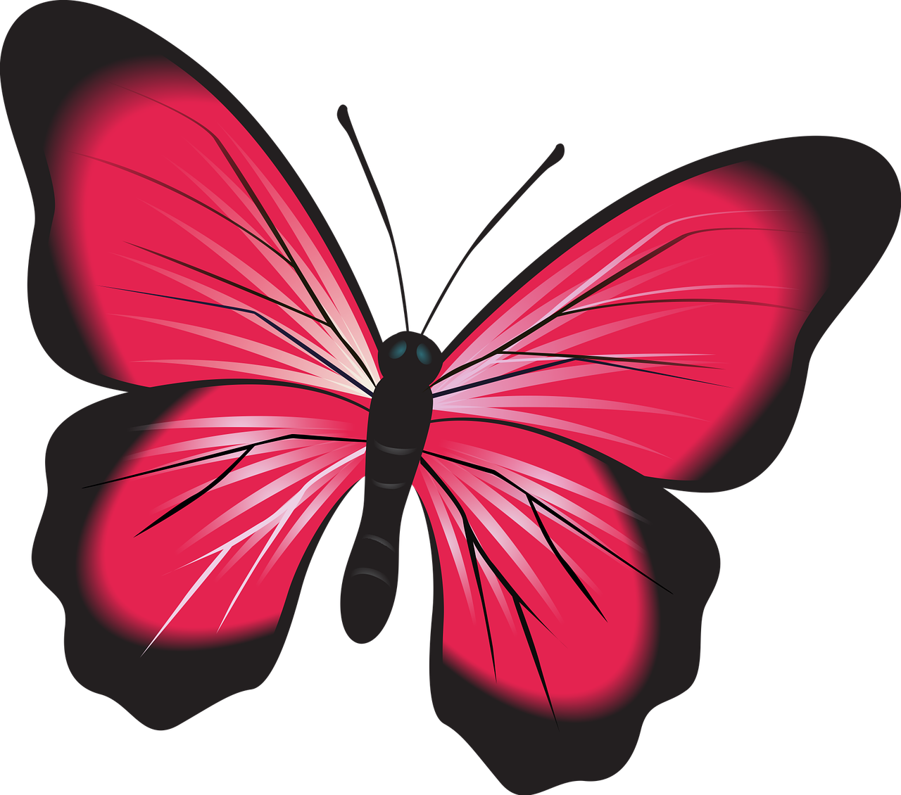 Pink clip art nature. Clipart butterfly insect