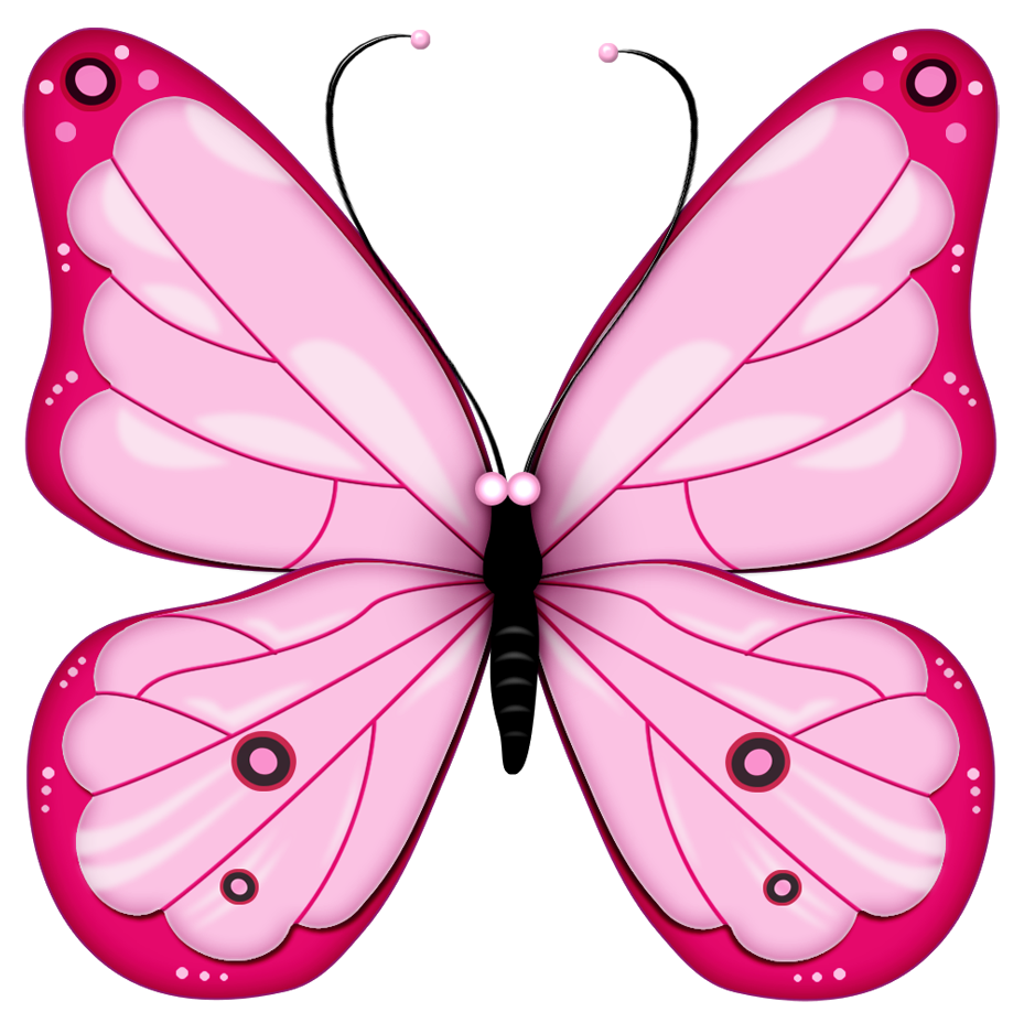 moth clipart brown pink