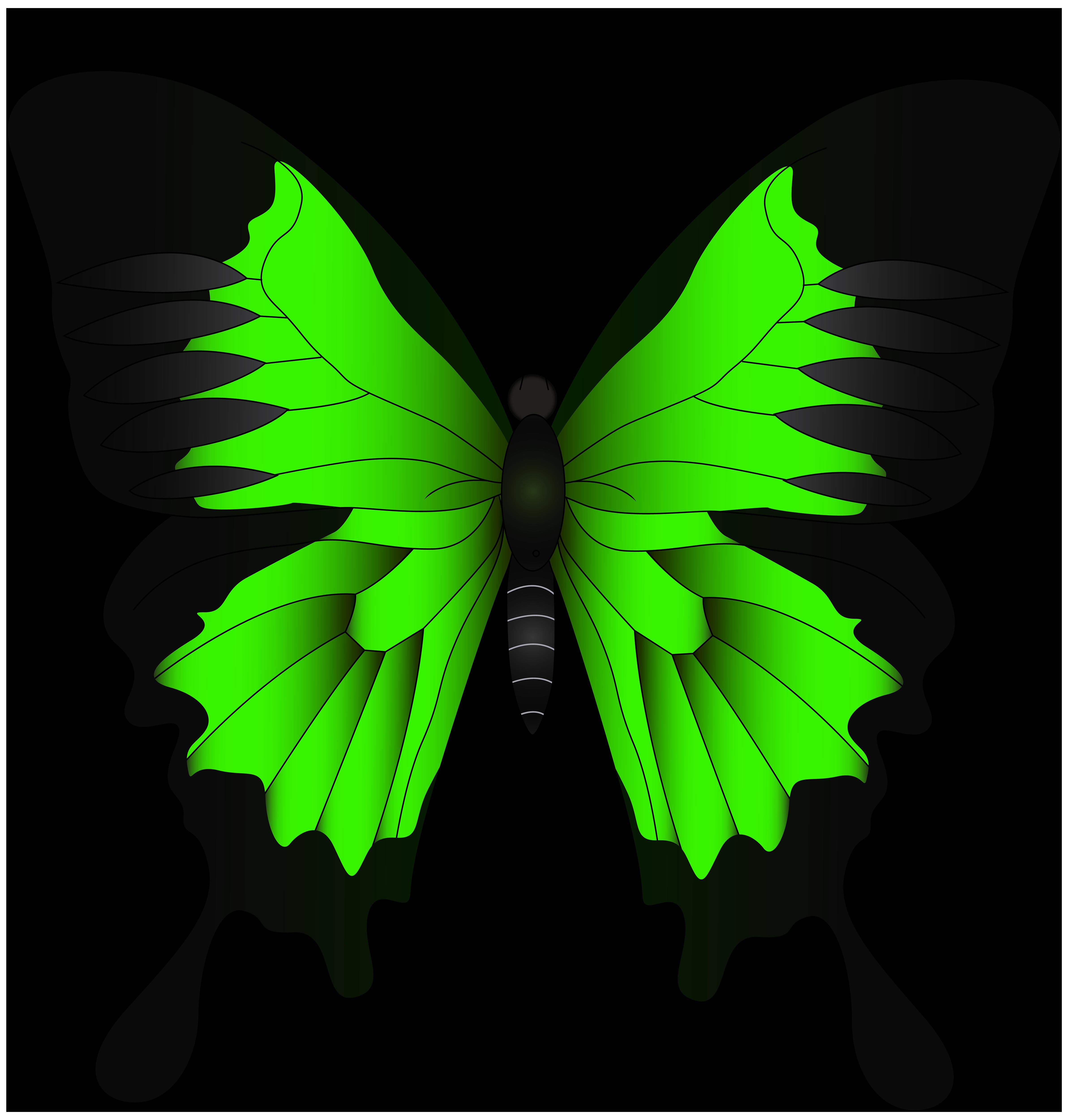 Png clip art image. Butterfly clipart light green