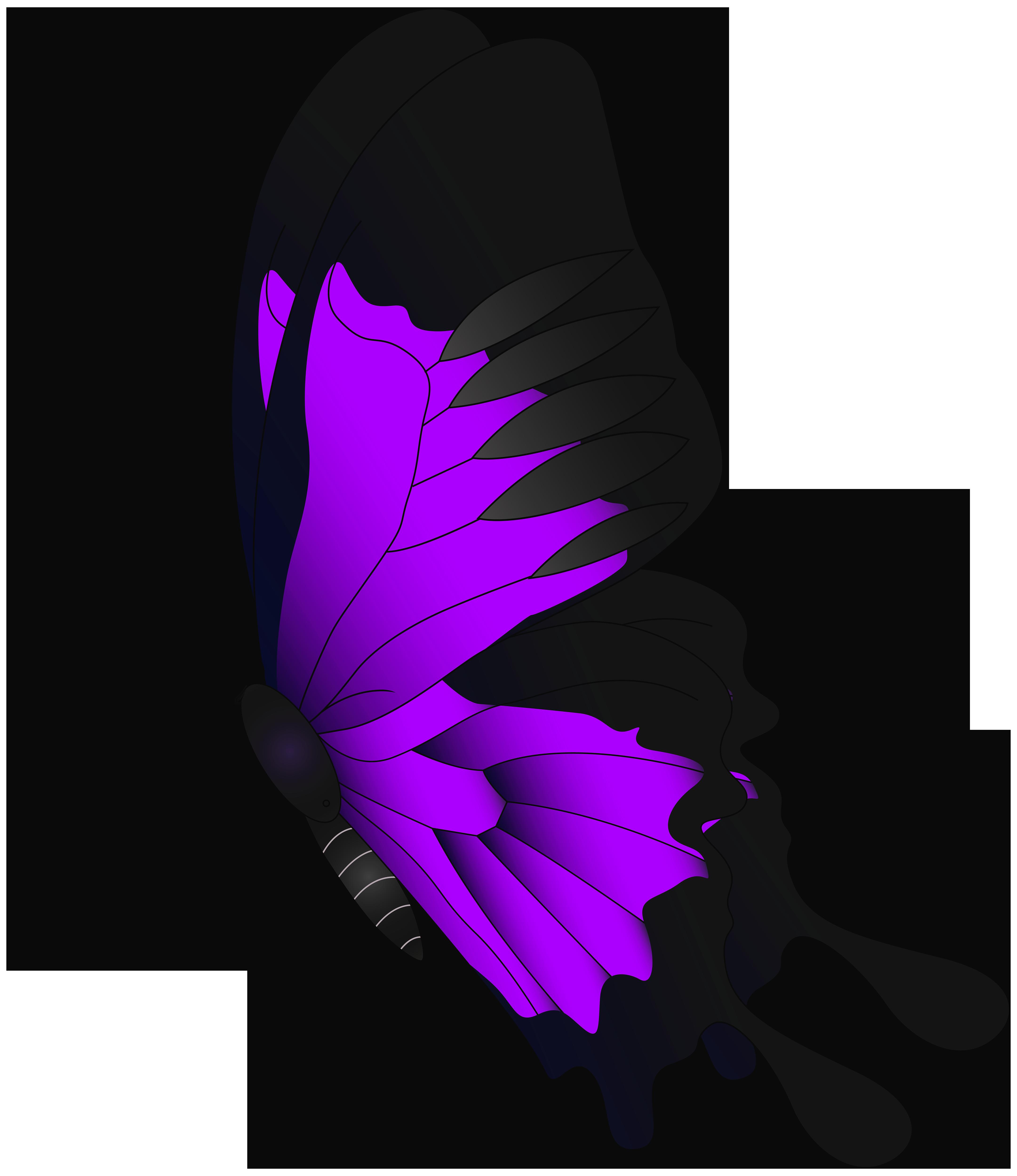 Butterfly chroma key flying. Keys clipart purple
