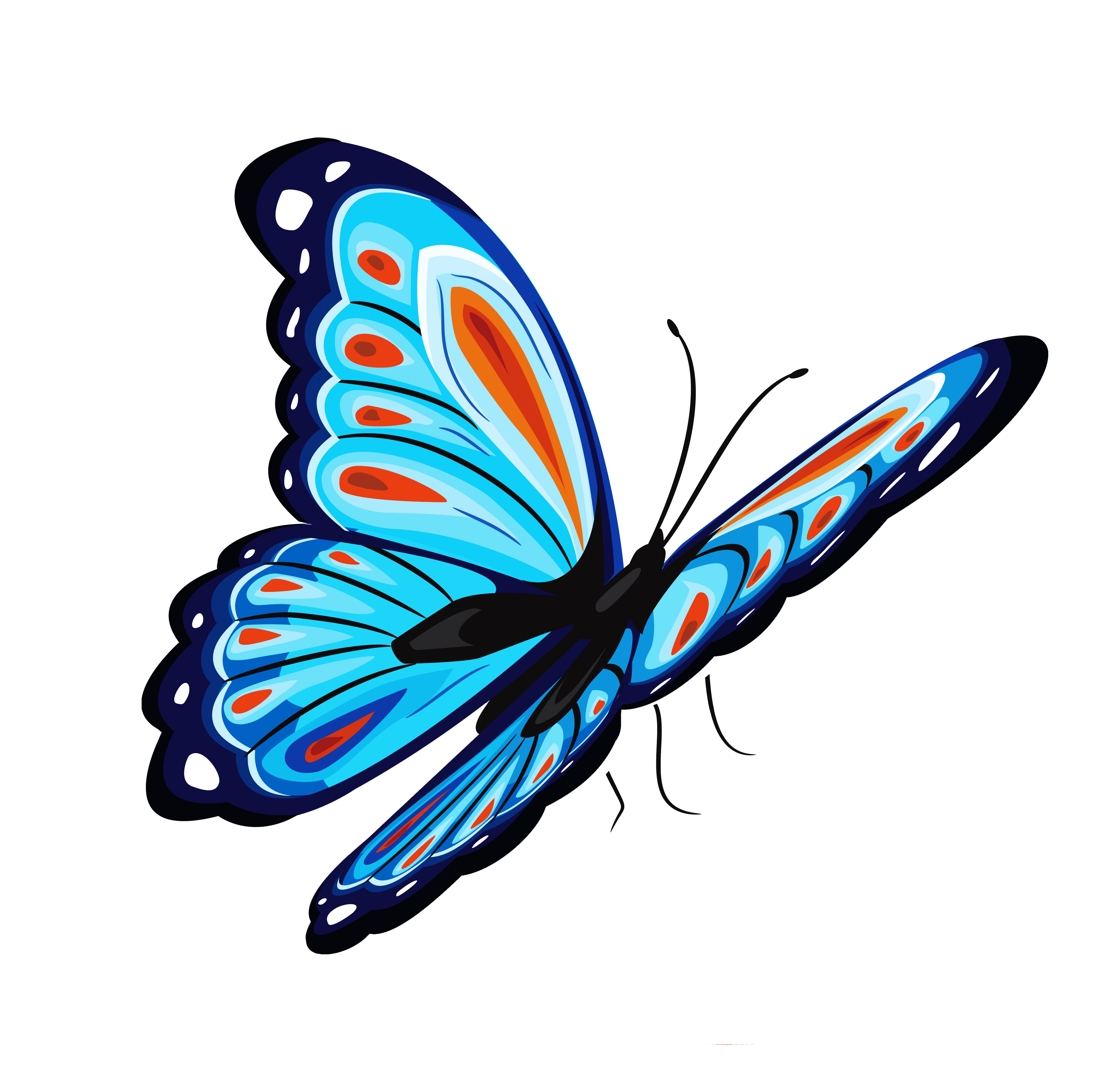 Eyes clipart butterfly. Common beliefs and symbolism