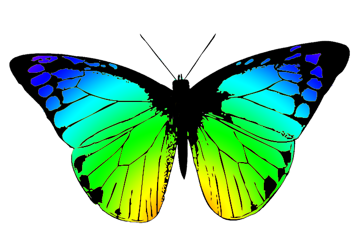Clipart butterfly net. At getdrawings com free