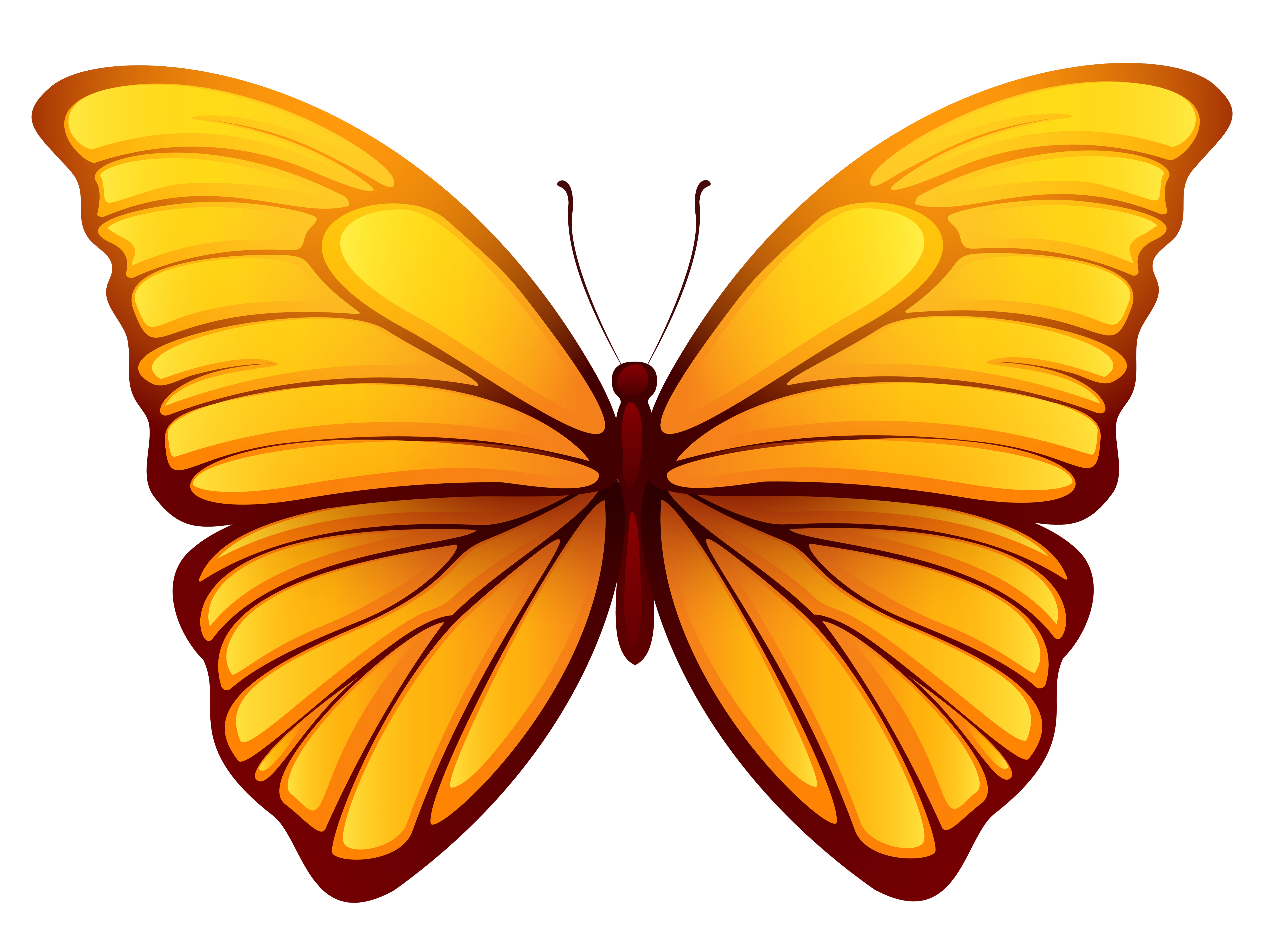 Picture gallery yopriceville high. Butterfly png images