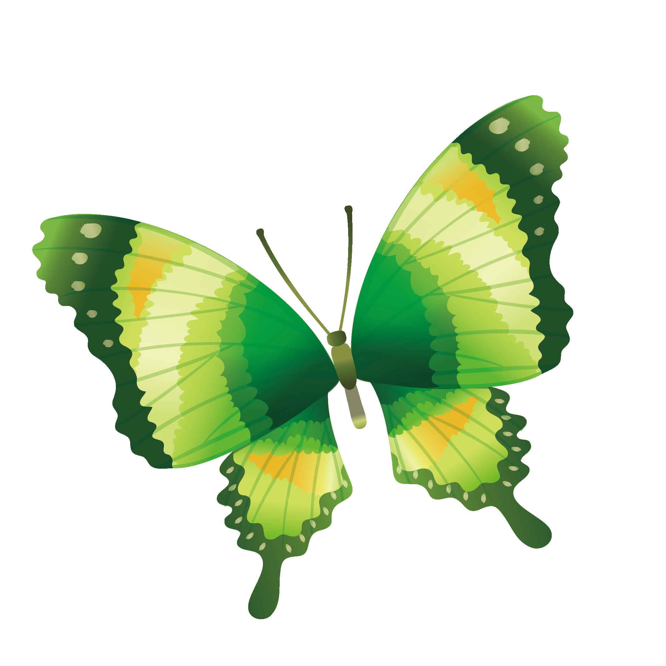 Clipart butterfly peach. Drawing clip art hand
