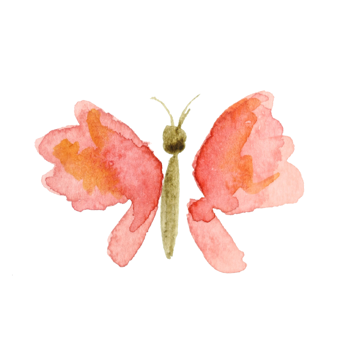 Clipart butterfly peach. Watercolour flowers watercolor painting