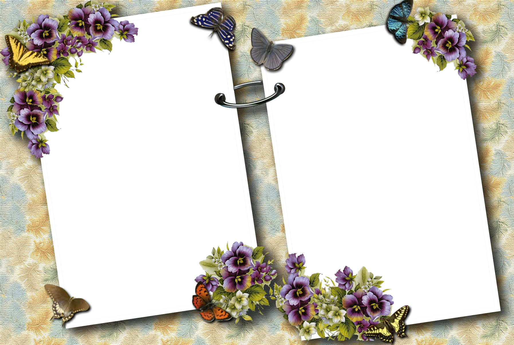 Transparent butterflies photo yopriceville. Clipart gallery photograph frame