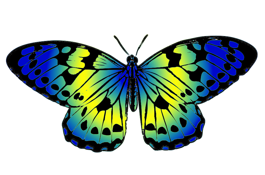 Current project pinterest. Clipart butterfly printable