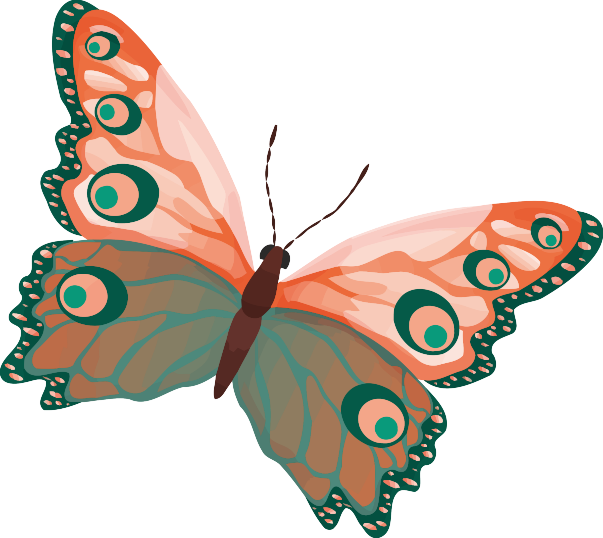 Clipart butterfly printable. Impressive pictures to colour