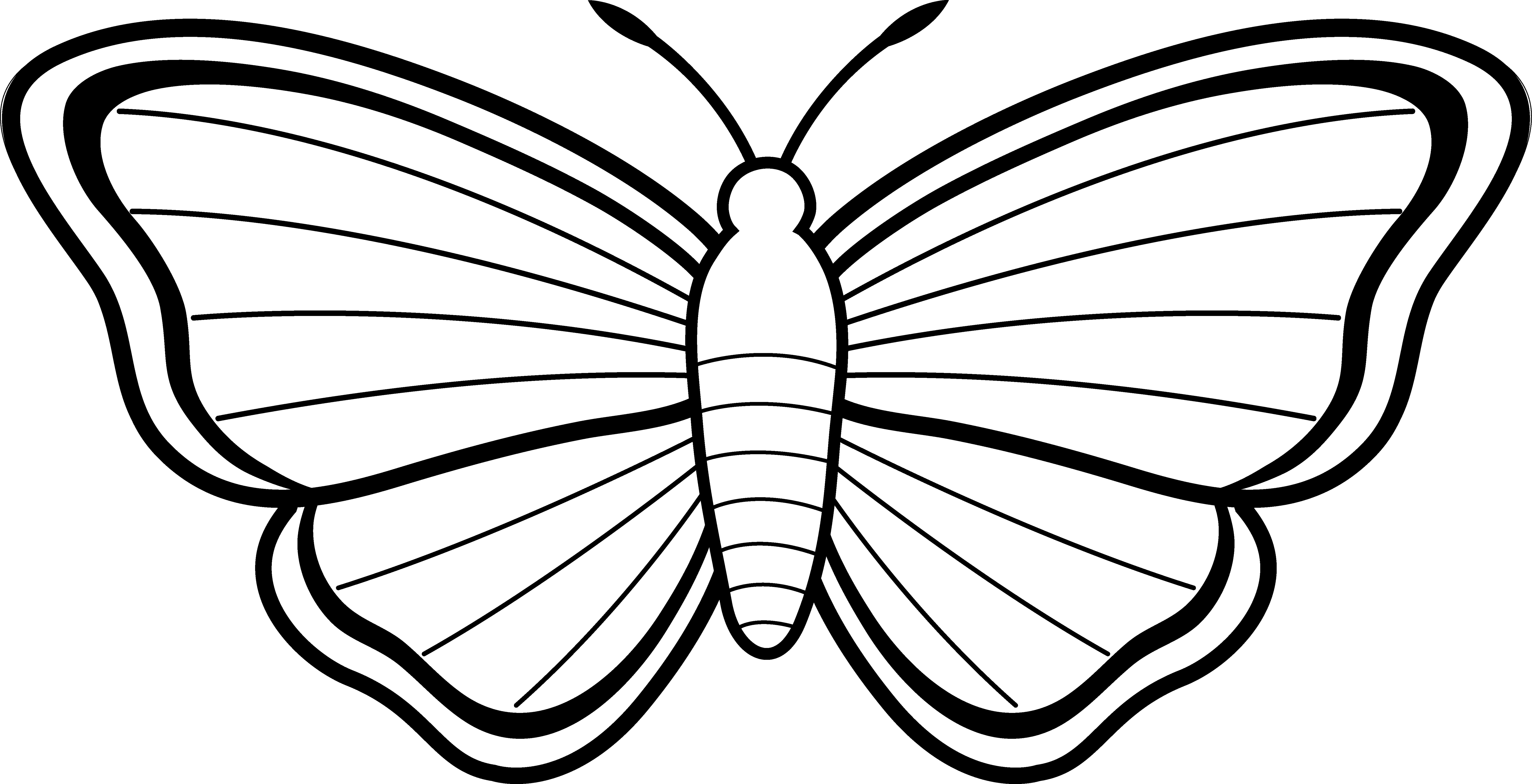 Clipart butterfly printable. Clip art picture of