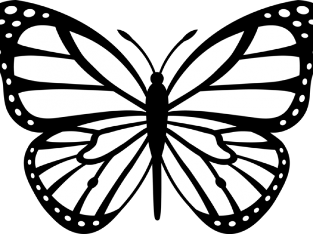 Outline drawing at getdrawings. Clipart butterfly printable